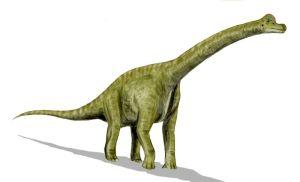 Aqui un bonito Braquiosaurio (clic para ampliar)