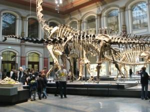 Yo junto a un Braquiosaurio y un Diplodocus en el museo de Berlin (clic para ampliar)