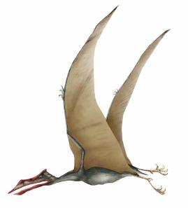 El Quetzalcoatlus, un jumbo del cretácico (clic para ampliar)