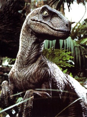 iguana grande