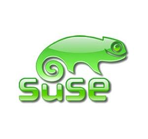 Un camaleón, uno de mis bichos favoritos, es el logo de SuSE. ¿Sería una señal?