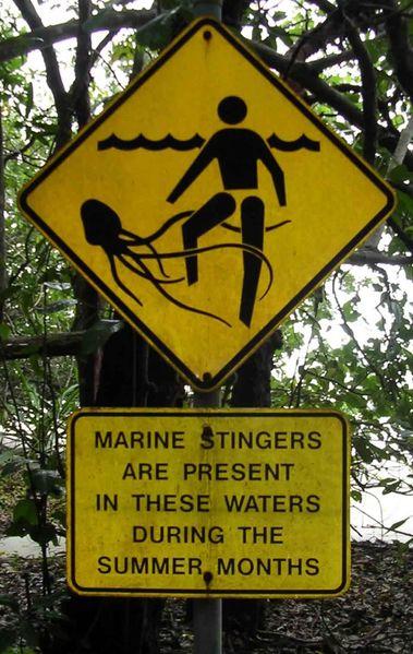 No, no es un rabo submarino con tentáculos.  Es una señal australiana de peligro por avispas marinas.