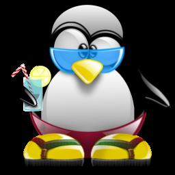 A los pingüinos también les gusta el calor de vez en cuando...