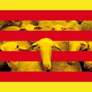 diada catalana